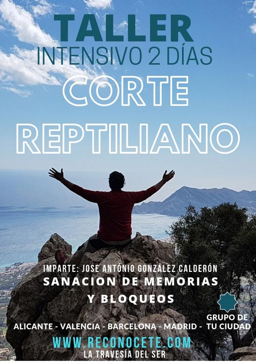 Taller Corte Reptiliano - Sanación de Memorias y Bloqueos